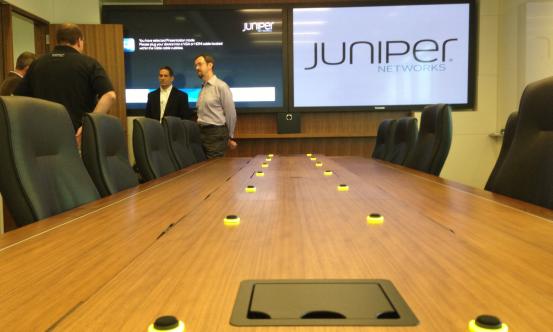 joey-juniper-1
