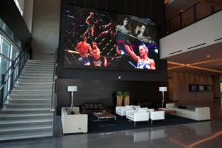 NanoLumens UFC 2.png